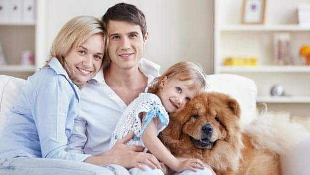 Wills & Trusts dog-young-family Direct Wills Bow
